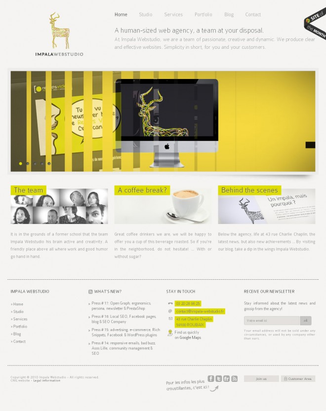 14-Lille-corporate-website-design.preview